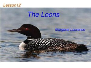"""""""The Loons""""代写"""
